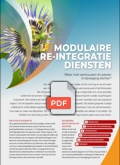 flyer tn modulaire re integratiediensten